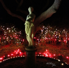 Statue at Winter Lights in Manteo
