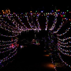 Christmas Lights at Elizabethan Gardens