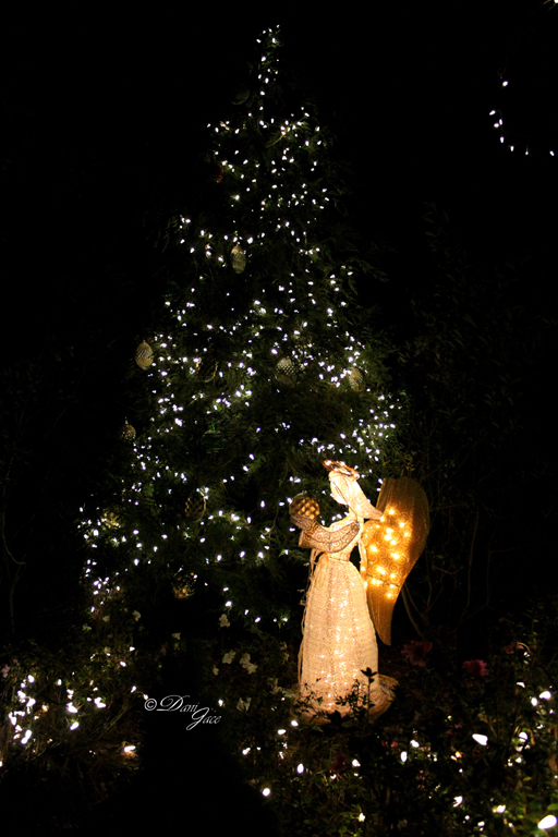 Angel at Elizabethan Gardens