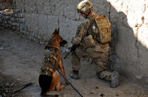 U.S. Army 1st Sgt. Brian Zamiska, with Delta Company, 3rd Battalion, 187th Infantry Regiment, 3rd Brigade Combat Team, 101st Airborne Division, provides security with an Air Force military working dog during a patrol with members of the Afghan Border Police in the Tera Zeyi district, Afghanistan, Jan. 6, 2013. (DoD photo by Spc. Alex Kirk Amen, U.S. Army/Released)